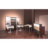 Коллекция парикмахерской мебели Modus