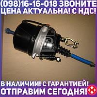 ⭐⭐⭐⭐⭐ Камера торм.24/24HL (RIDER) RD 019260