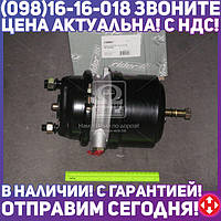 ⭐⭐⭐⭐⭐ Камера торм.20/24 (RIDER) RD 019264