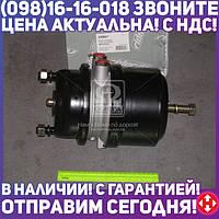 ⭐⭐⭐⭐⭐ Камера торм. 20/24HFL3(RIDER) RD 019279