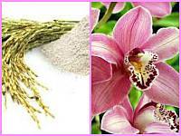 Rizactive (рис и орхидея) 10гр