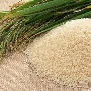 Масло рисовых отрубей 50мл