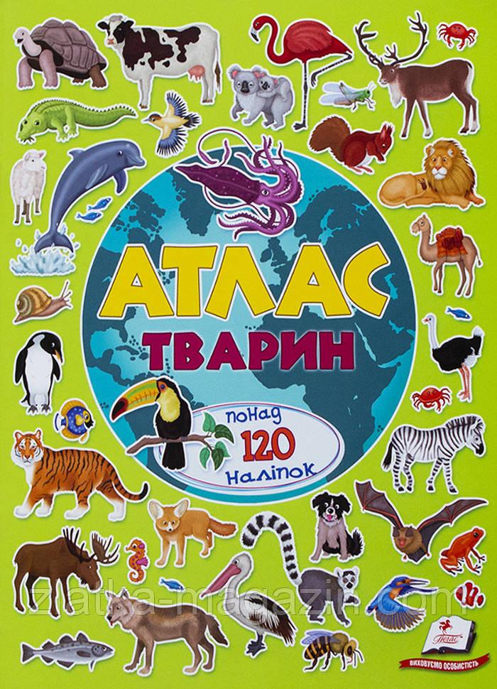 Атлас тварин - Илария Барзотти (9789669472946)