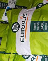 Евралис Белла семена подсолнечника Euralis