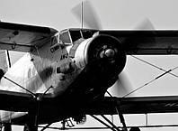 Обработка рапса от вредителей и болезней с самолета Ан-2