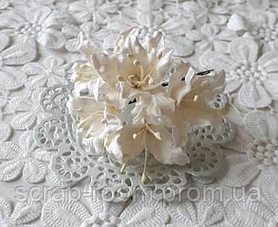 Лилия бумажная бежевые 3 см, лилия бежевая, бумажная лилия бежевая 3 см Таиланд, бежевая лилия, цена за 1 шт