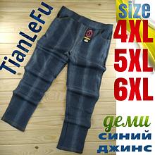 Жіночі брюки під джинс TianLeFu демисезон синій джинс 4 кишені (ростовка: 4-5-6XL) львівська залізниця-21250