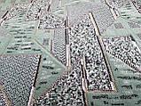 Шпігель Місто олива, фото 9