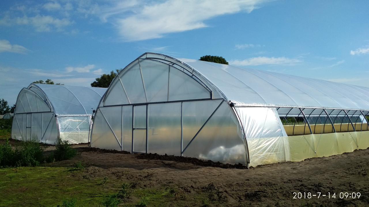 Теплицы фермерские оцинкованные для бизнеса для сезонного выращивания рассады на заказ