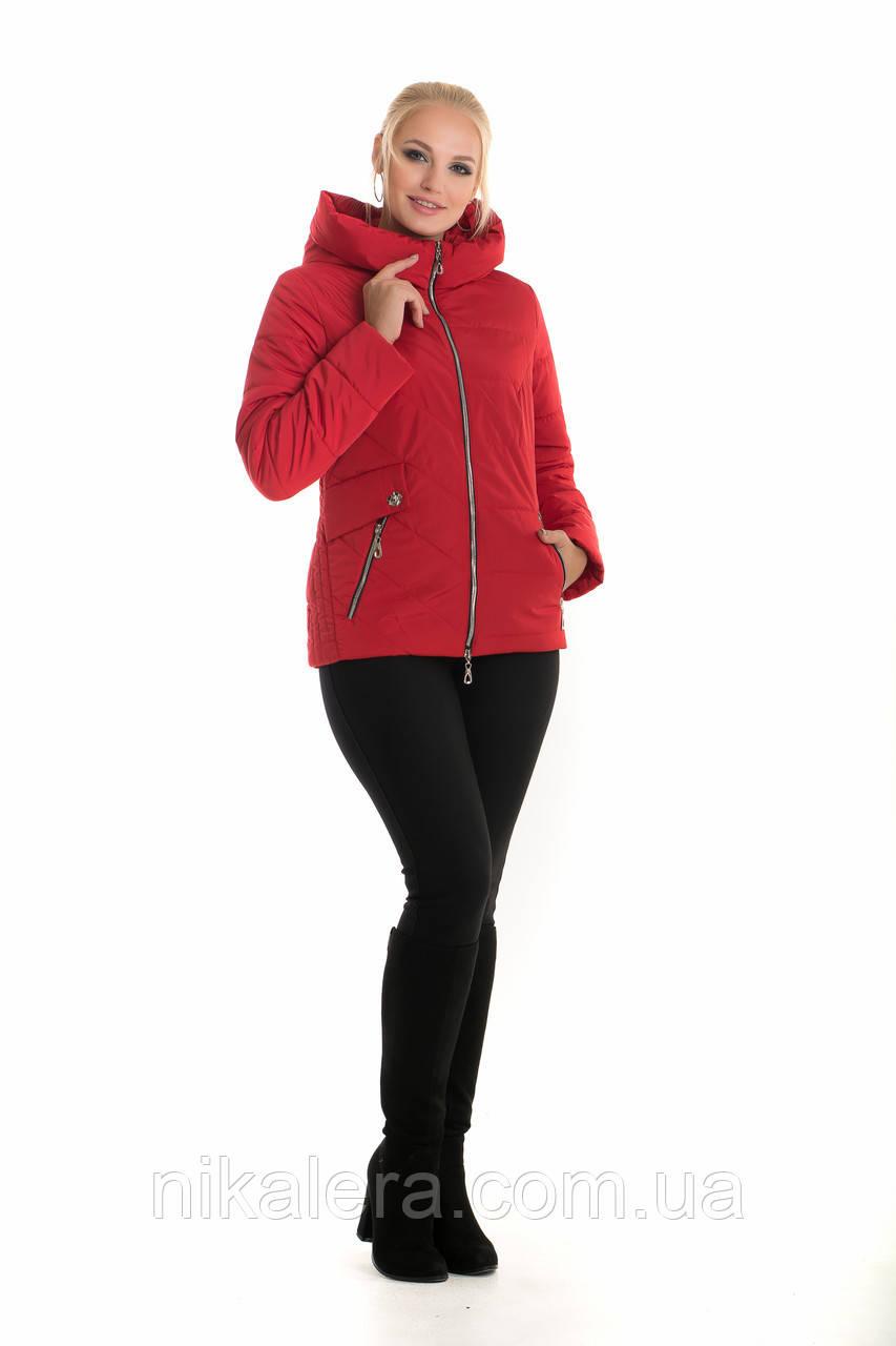 Демисезонная красная куртка с капюшоном рр 42-56