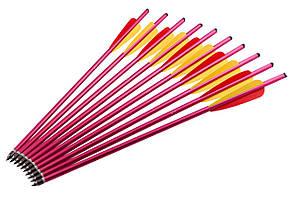 Стрелы-AL16 (алюминий) - 10 штук