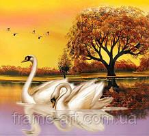 Алмазная вышивка DM-259 Лебеди на пруду 40*40см
