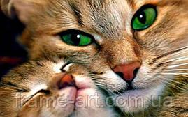 Алмазная вышивка DM-247 Кошка с котенком 40*25см