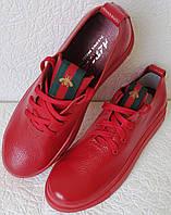 Gucci! Красные кожаные кеды мокасины женские слипоны в стиле Гуччи