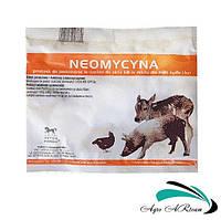 Неомицин 20 %, 1 кг, (Польша)