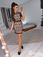 Платье-футляр с коротким рукавом из кружева 66PL2460, фото 1