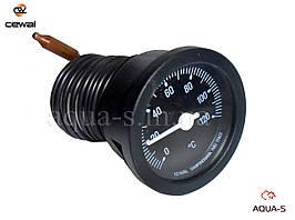Термометр капиллярный  Cewal T52P D 52 мм. (0-120° C) для отопления (Италия)