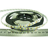 SMD2835 (120 LED/м) 12vdc indoor ip-20