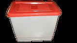 Бак для напування курей бройлерів перепелів кроликів для ніпельних поїлок. Ємність для ніпельного напування, фото 2