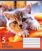 """Тетрадь 18 листов. линия """"Be my friend"""""""