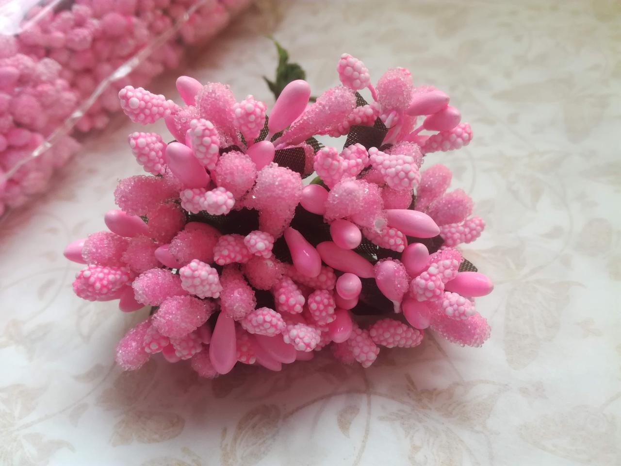 Тычинка обыкновенная, ярко-розовая