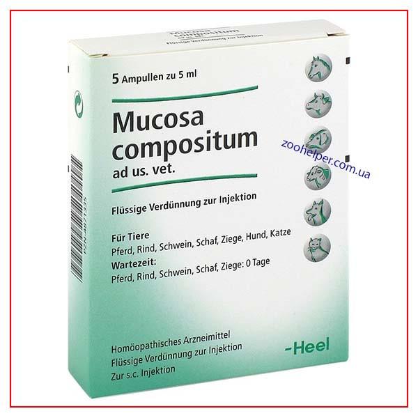 Mucosa Compositum 5мл №5 амп. (Мукоза композитум Хеель) Heel
