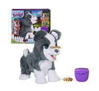 Интерактивная игрушка Hasbro щенок Рикки FurReal Friends Ricky Pet