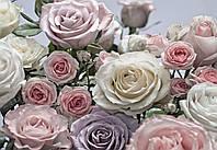 "Фотообои  ""Floraison"" 254х368 8-736"
