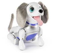Собака робот Zoomer Playful Pup Responsive Robotic Dog Spin Master