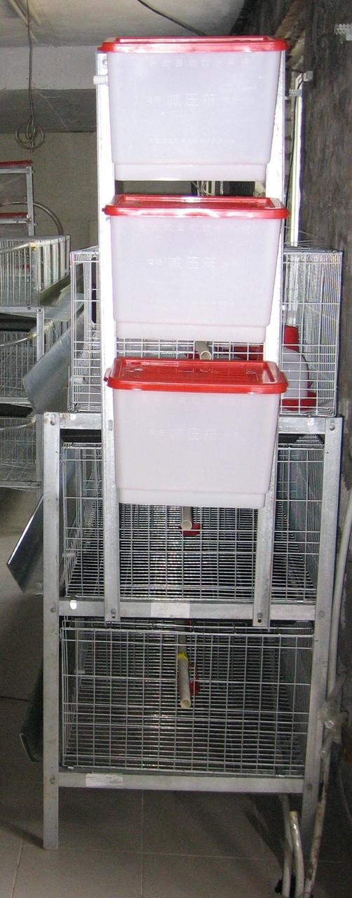 Клетки для 60 кур несушек