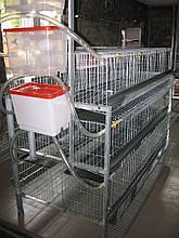 Клетки для  120 кур несушек