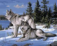 Картина раскраска по номерам на холсте 40*50см Babylon VP236 Волки на снегу