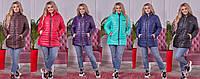 Женская демисезонная куртка М147 (р.50-60) в расцветках