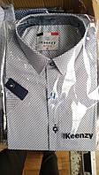 Рубашка на 7-14 лет с коротким рукавом коттоновая белая с окантовкой оптом
