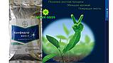 Инсектицид Конфидор Макси 1кг, фото 2