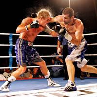 Бокс, единоборства, MMA, UFC, карате