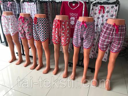 Женские цветные шорты хлопок Турция M,L,XL (48-52р), фото 2