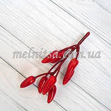 Перец чили на веточке, цвет красный , размер перчинки 2,5 х 1 см,