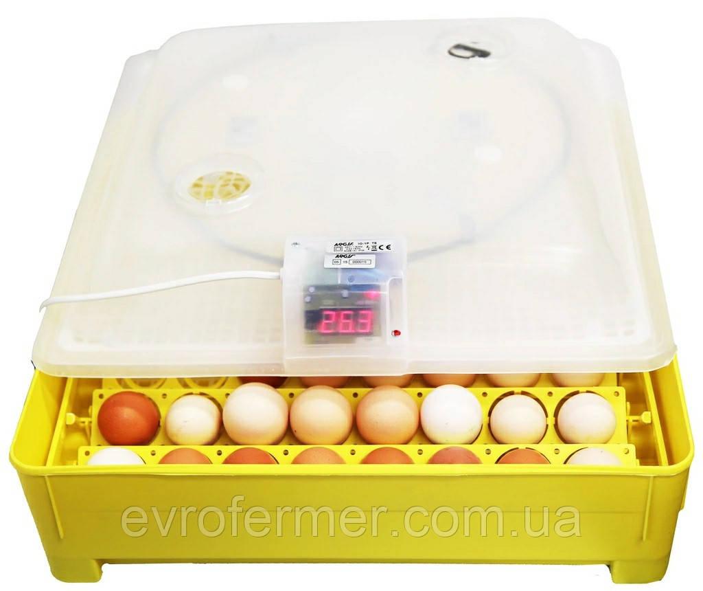Бытовой полуавтоматический инкубатор Asel для куриных, утиных яиц