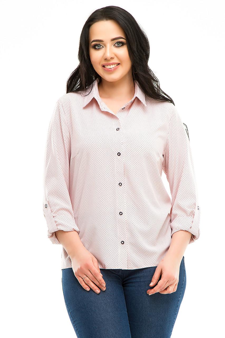 Блузка 5287 розовая  в горох