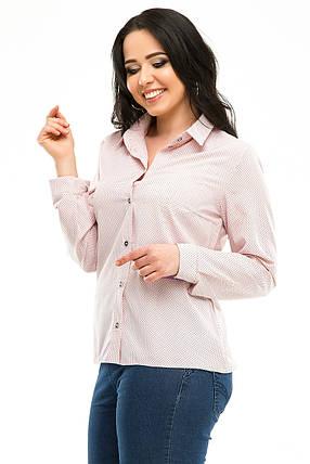 Блузка 5287 розовая  в горох, фото 2