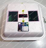 Инкубатор Рябушка SMART (автомат) , фото 2