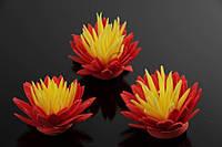 Цветок декоративный Kleinia, диаметр 3,5 см, фоамиран, цвет красный с желтой серединой, декоративные цветы, цветы исскуственне для рукоделия