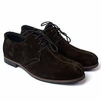 Туфлі коричневі замшеві з рядком чоловіче взуття великий розмір Rosso Avangard Kardinall Brown Vel BS, фото 1
