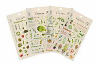 """(Цена за 12шт) Наклейки """"Green"""", 4 вида наклеек, на каждом планшете 23-30 наклеек, наклейка, наклейки для декора"""