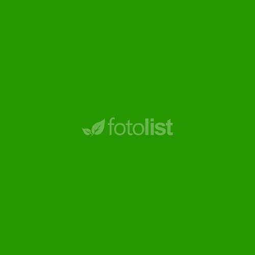 Фон студийный тканевый зеленый Visico PBM-3030 green 3х3м (Хромакей)