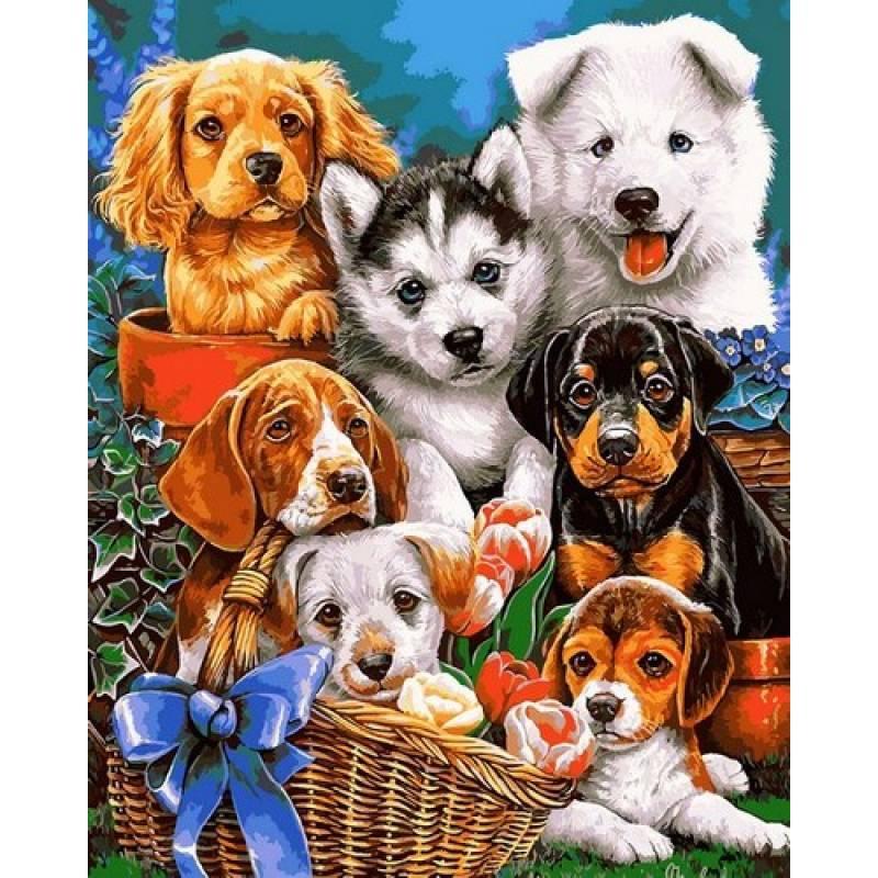 Картина по номерам Озорные щенки, 40x50 см., Babylon