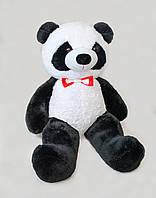 Мягкая игрушка Медведь Панда (165см)Черно-белый