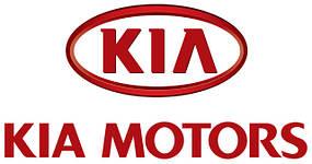 Коврики в багажник Kia