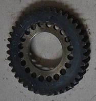 Шестерня привода ТНВД Т-40,Т-25,Т-16 (Д-144,Д-21)